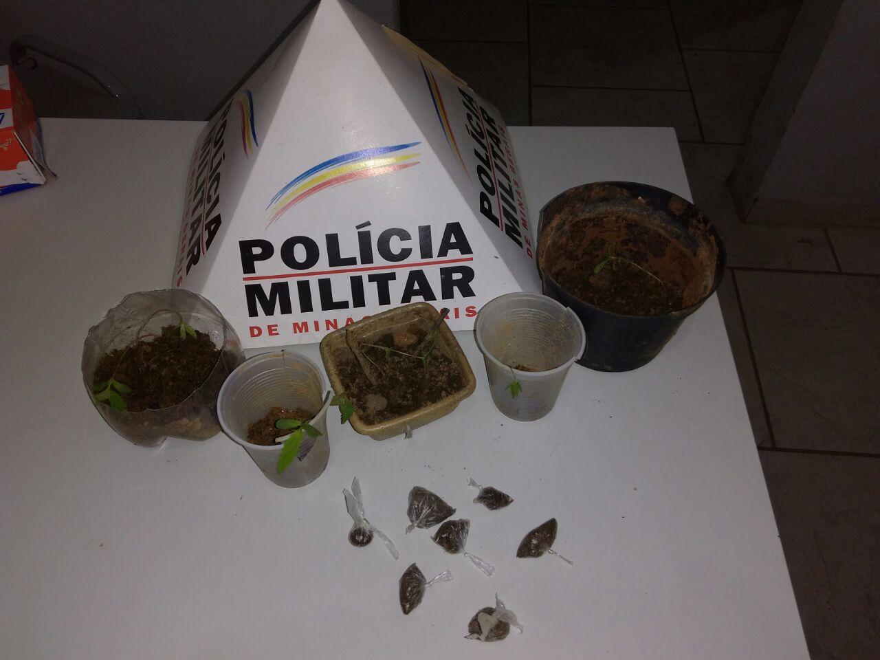POLÍCIA DESCOBRE PÉS DE MACONHA EM TUMIRITINGA – 05 PRESOS – ENTRE ELES, DOIS ADOLESCENTES